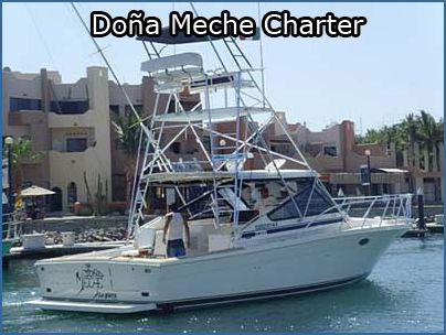 san jose del cabo sport fishing charters san jose del